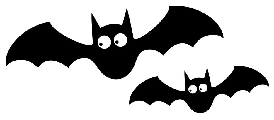 【月曜から夜ふかし】コウモリ語は日本語?お母さん、何か買ってね!